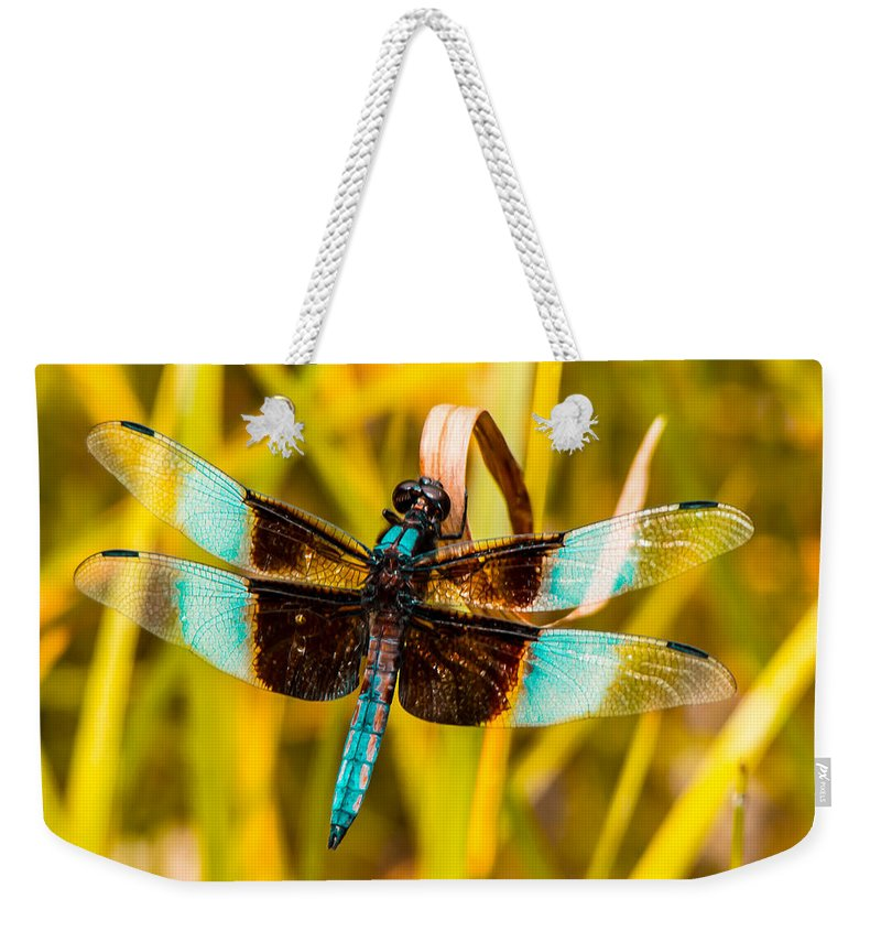 Dragonfly Weekender Tote Bag featuring the photograph Sweet Surrender by Kristin Hunt