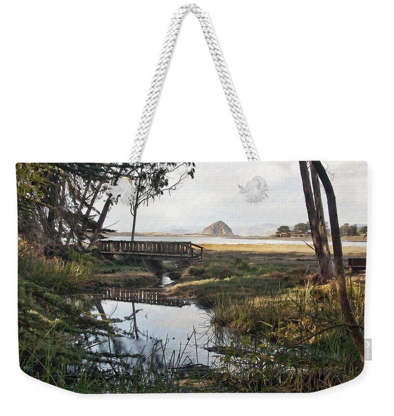 Park Weekender Tote Bag featuring the digital art Sweet Water Park by Sharon Foster