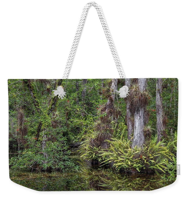 Everglades Weekender Tote Bag featuring the photograph Sweet Water Strand - 12 by Rudy Umans