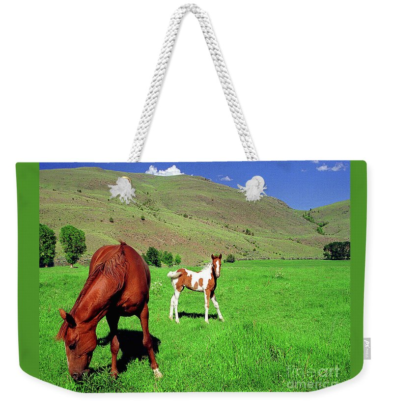 Paint Weekender Tote Bag featuring the photograph Sweetest Gift by Don Schimmel