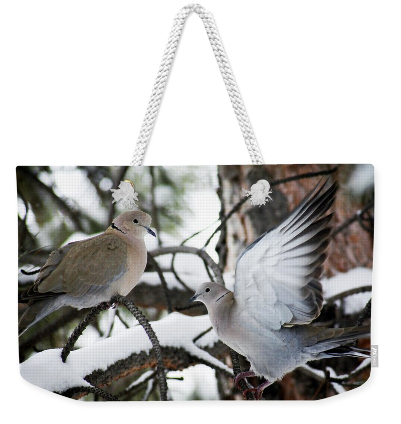 Dove Weekender Tote Bag featuring the photograph Sweetness In The Trees by Marilyn Hunt