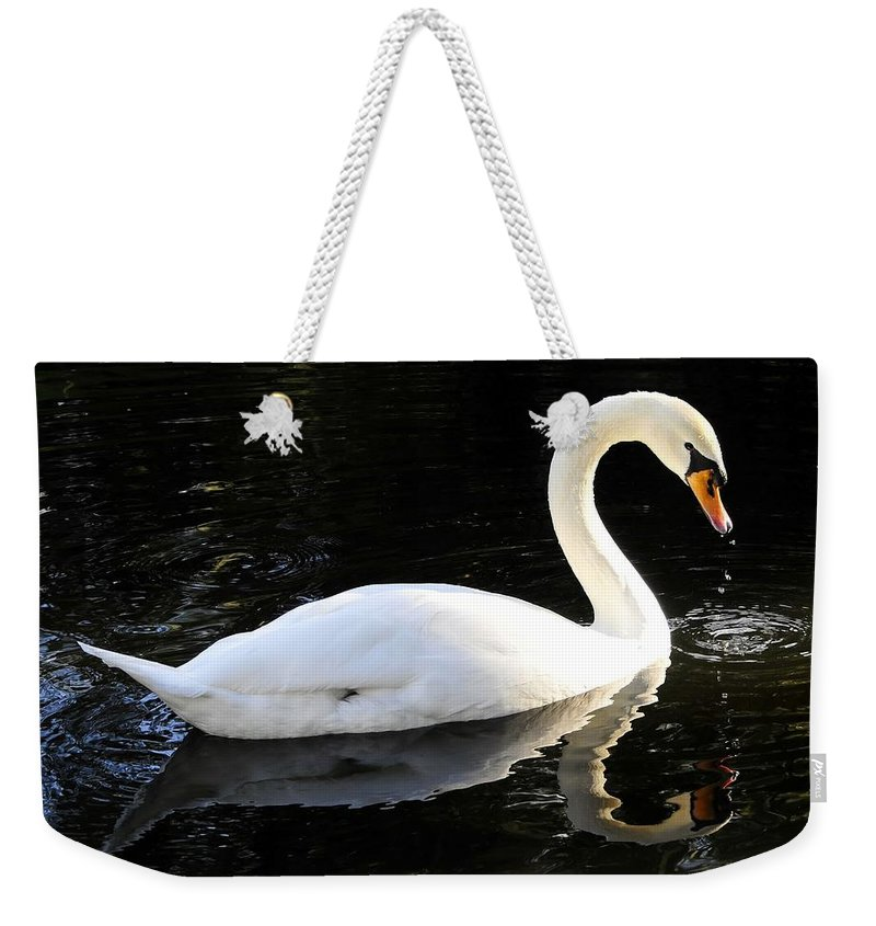 Swan Weekender Tote Bag featuring the photograph Swimming Swan by David Lee Thompson