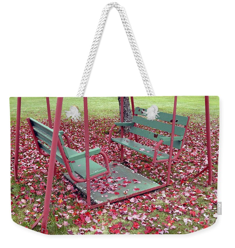 Swing Set Weekender Tote Bag featuring the photograph Swing Set by David Lee Thompson