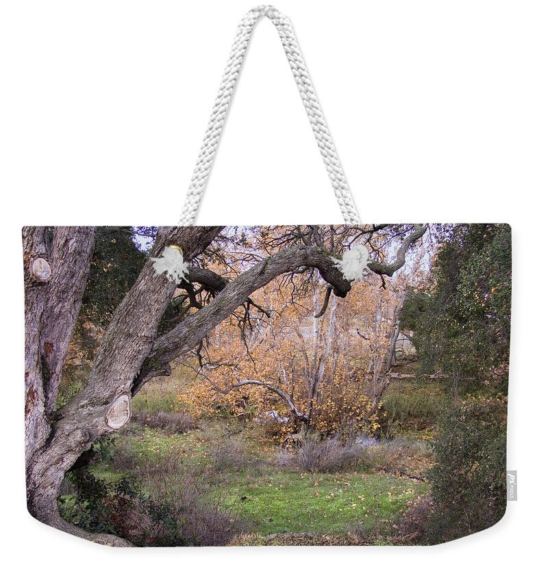 Landscape Weekender Tote Bag featuring the photograph Sycamore Grove Fall by Karen W Meyer