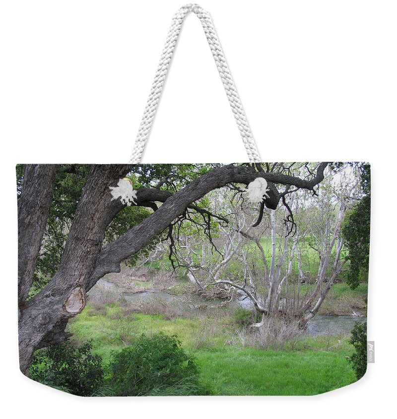 Landscape Weekender Tote Bag featuring the photograph Sycamore Grove by Karen W Meyer