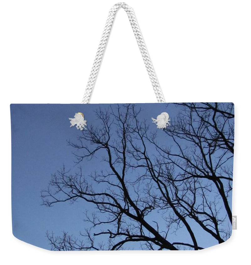 Winter Blue Sky Tree Silhouette Photograph Skyscape Canvas Prints Contrast Sycamore Silhouette Arbor Sky Clear Sky Clear Day Weekender Tote Bag featuring the photograph Sycamore Silhouette by Joshua Bales