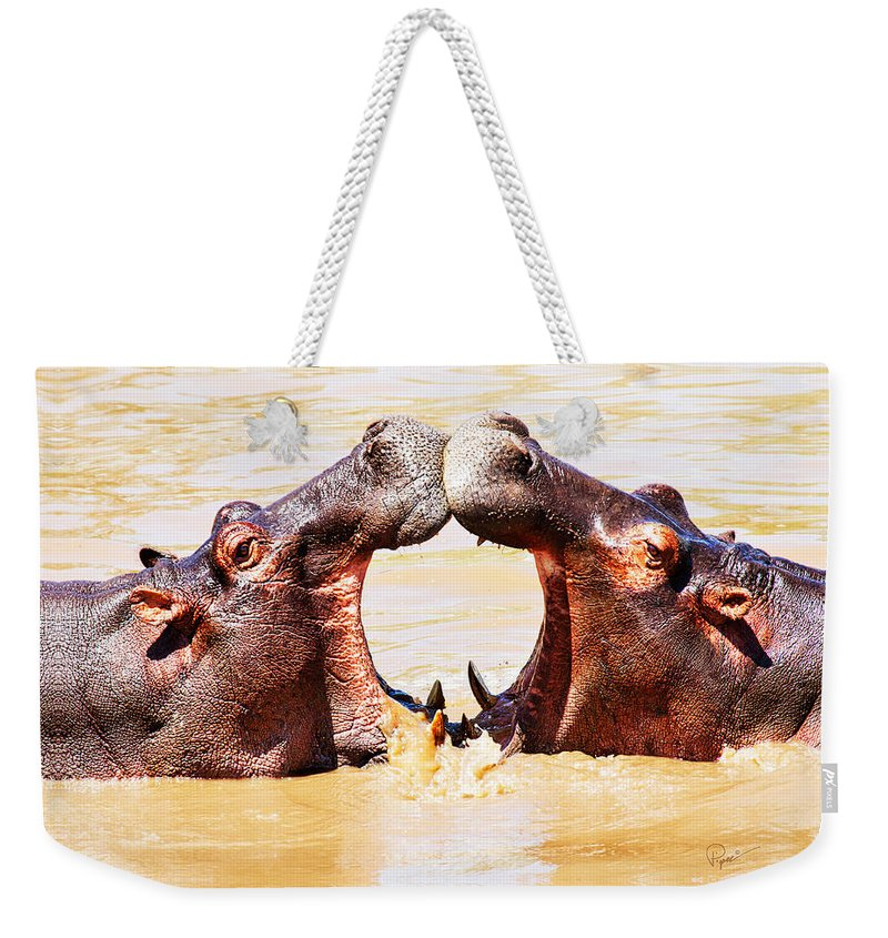 Hippo Weekender Tote Bag featuring the photograph Sycnonicity by PiperAnne Worcester