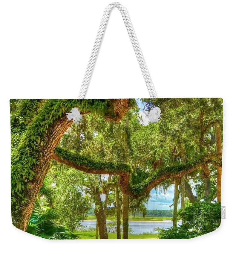 Trees Weekender Tote Bag featuring the photograph Take A Walk by Debbi Granruth