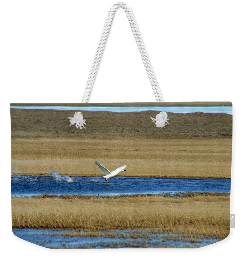 Swan Weekender Tote Bag featuring the photograph Take Off by Anthony Jones