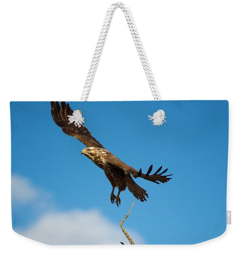 Nature Weekender Tote Bag featuring the photograph Take Off by Crystal Massop