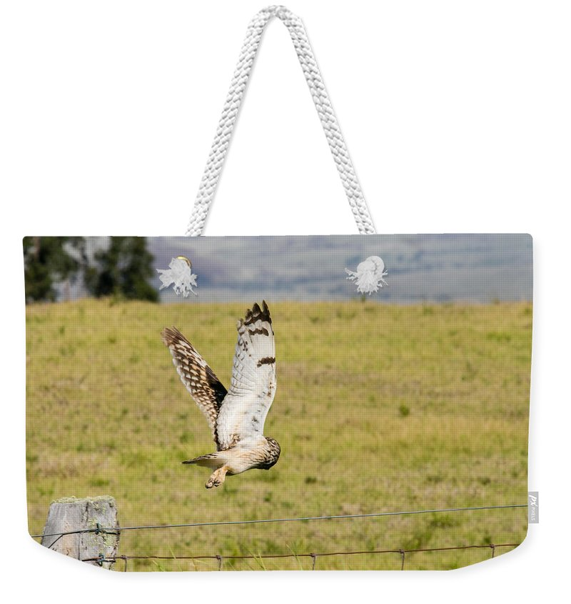 Pueo Weekender Tote Bag featuring the photograph Taking Off by Paul Miyasaki