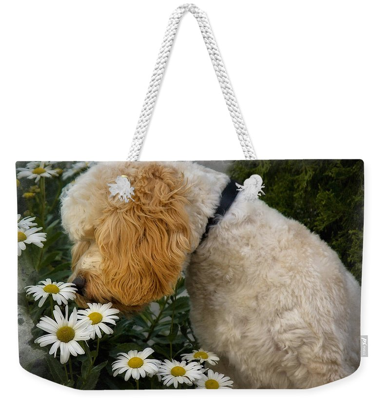 Dog Weekender Tote Bag featuring the photograph Taking Time To Smell The Flowers by Susan Candelario