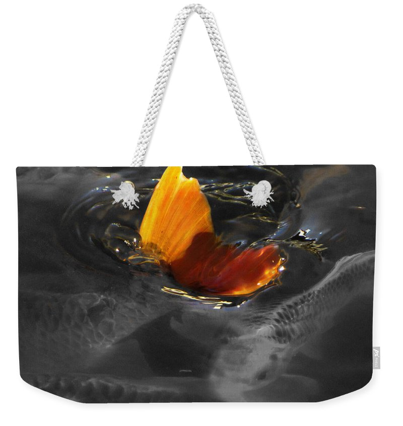 Black Weekender Tote Bag featuring the photograph Tale Of The Wild Koi 3 by September Stone