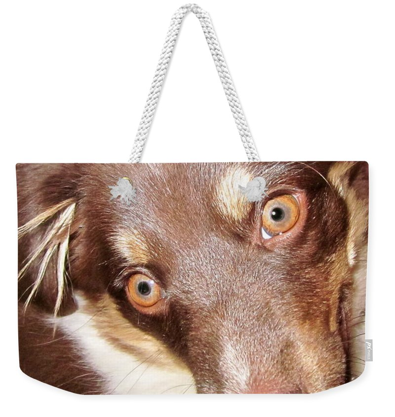 Talking Dog Weekender Tote Bag featuring the photograph Talking Dog by Gwyn Newcombe