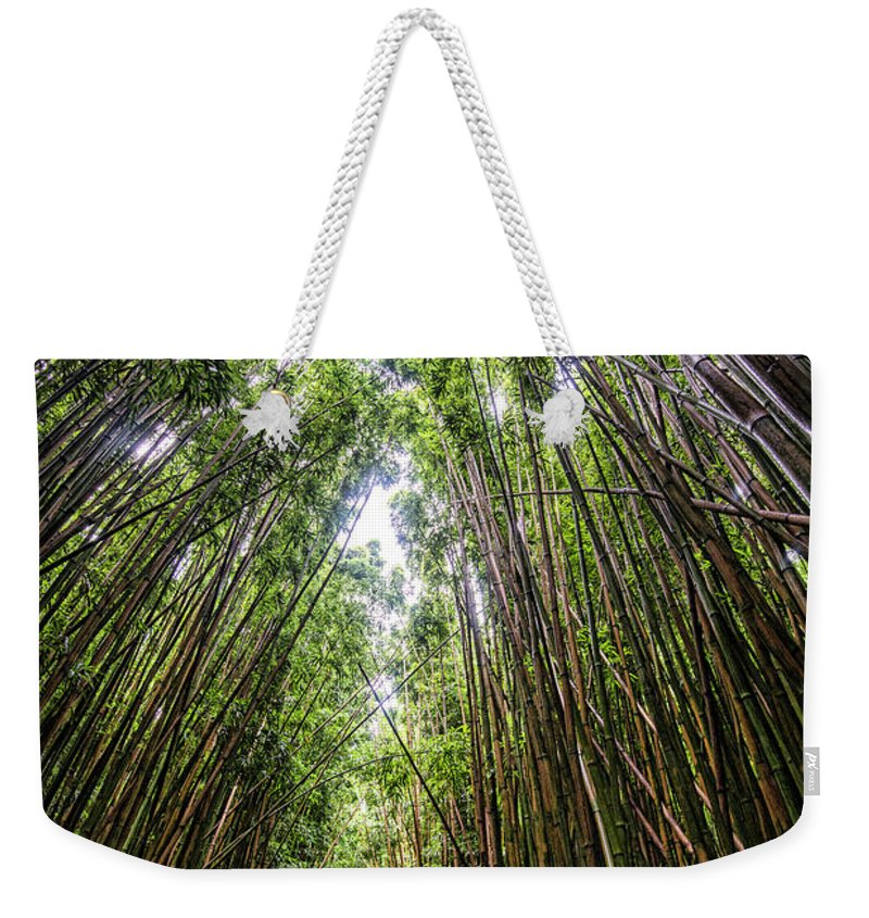 Bamboo Weekender Tote Bag featuring the photograph Tall Bamboo by Keith Ducker