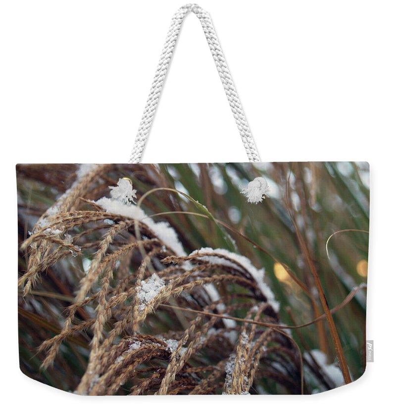 Tall Grass Weekender Tote Bag featuring the photograph Tall Grass by Andrea Lynch