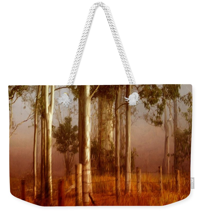 Landscape Weekender Tote Bag featuring the photograph Tall Timbers by Holly Kempe