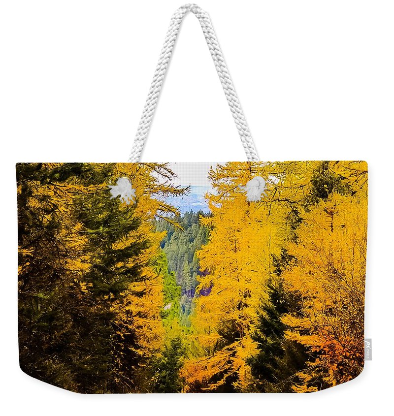 Weekender Tote Bag featuring the photograph Tamarack Trail by Dan Hassett