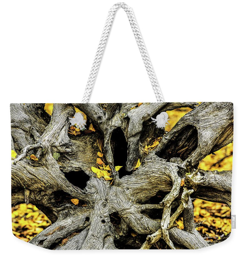 Aspen Leaves Weekender Tote Bag featuring the photograph Tangled Roots by Kurt Meredith