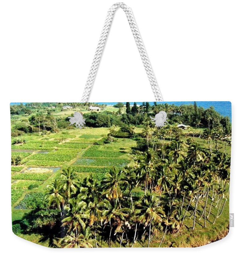 1986 Weekender Tote Bag featuring the photograph Taro Fields by Will Borden
