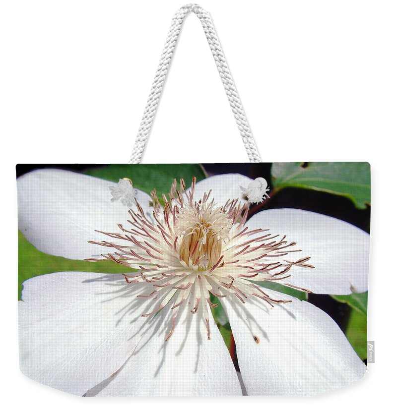 Clematis Weekender Tote Bag featuring the photograph Tattered And Torn by RC DeWinter
