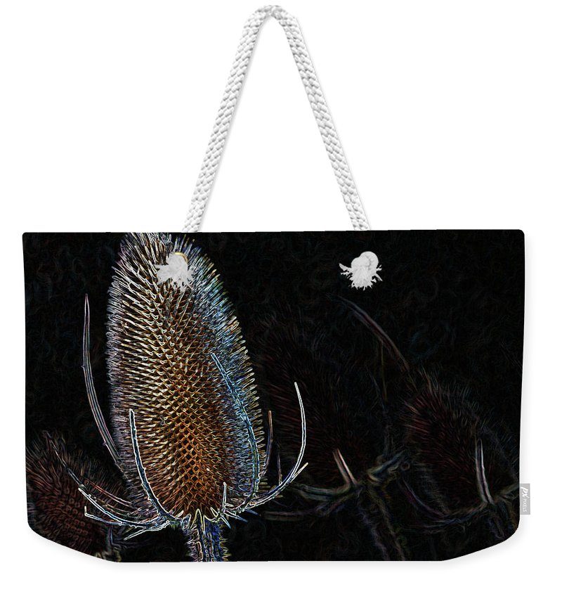 Teasel Weekender Tote Bag featuring the photograph Teasel Glow by Bel Menpes