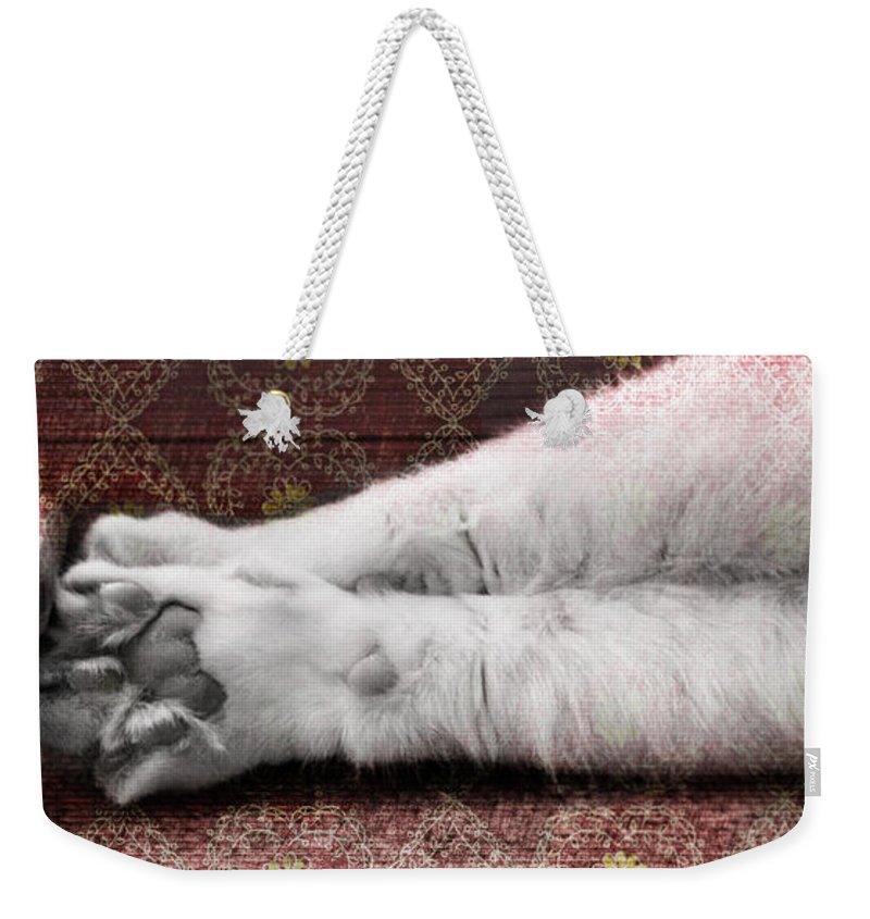 Cat Weekender Tote Bag featuring the photograph Teddy's Paw by Elaine Berger