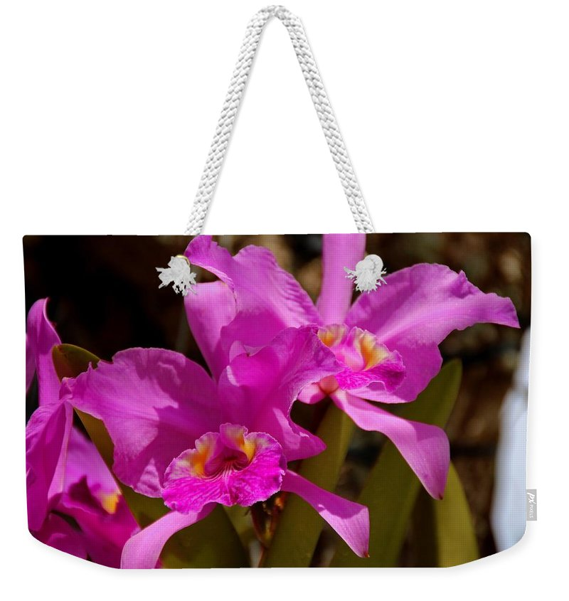 Orchid Weekender Tote Bag featuring the photograph Tempting Arrangements by Michiale Schneider