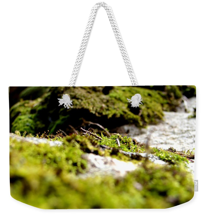 Moss Weekender Tote Bag featuring the photograph Tennesee Moss by Sarah Houser