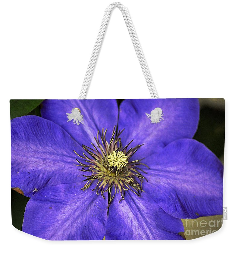 Clay Weekender Tote Bag featuring the photograph Tenticles by Clayton Bruster