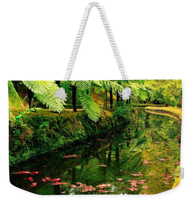 Azores Weekender Tote Bag featuring the photograph Terra Nostra Park by Gaspar Avila
