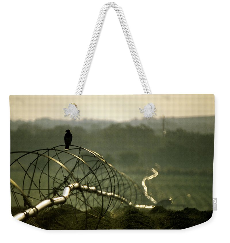 Hawk Weekender Tote Bag featuring the photograph Texas Hawk by Jerry McElroy