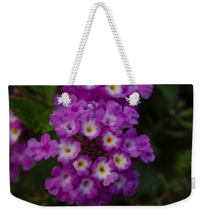 James Smullins Weekender Tote Bag featuring the photograph Texas Lantana by James Smullins