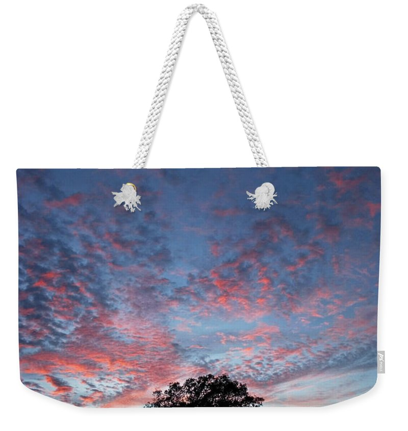 Tree Weekender Tote Bag featuring the photograph Texas Sunset by Skip Hunt