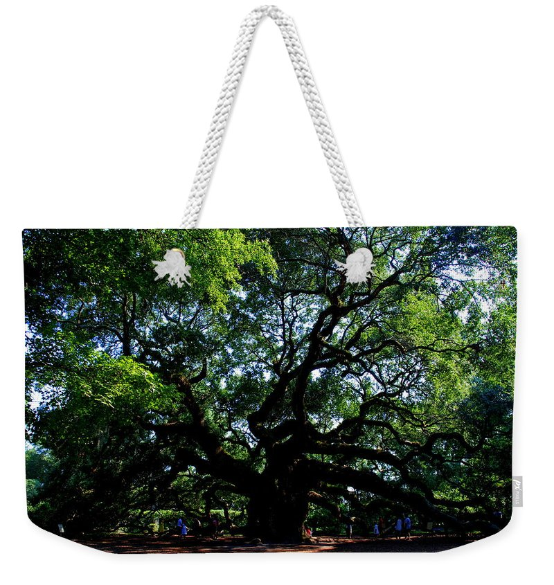 Angel Oak Weekender Tote Bag featuring the photograph The Angel Oak In Summer by Susanne Van Hulst