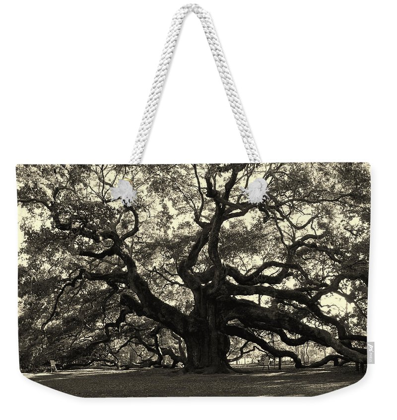 Angel Oak Weekender Tote Bag featuring the photograph The Angel Oak by Susanne Van Hulst