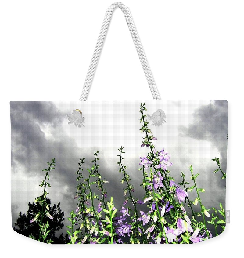 Storm Weekender Tote Bag featuring the photograph The Approaching Storm by Will Borden