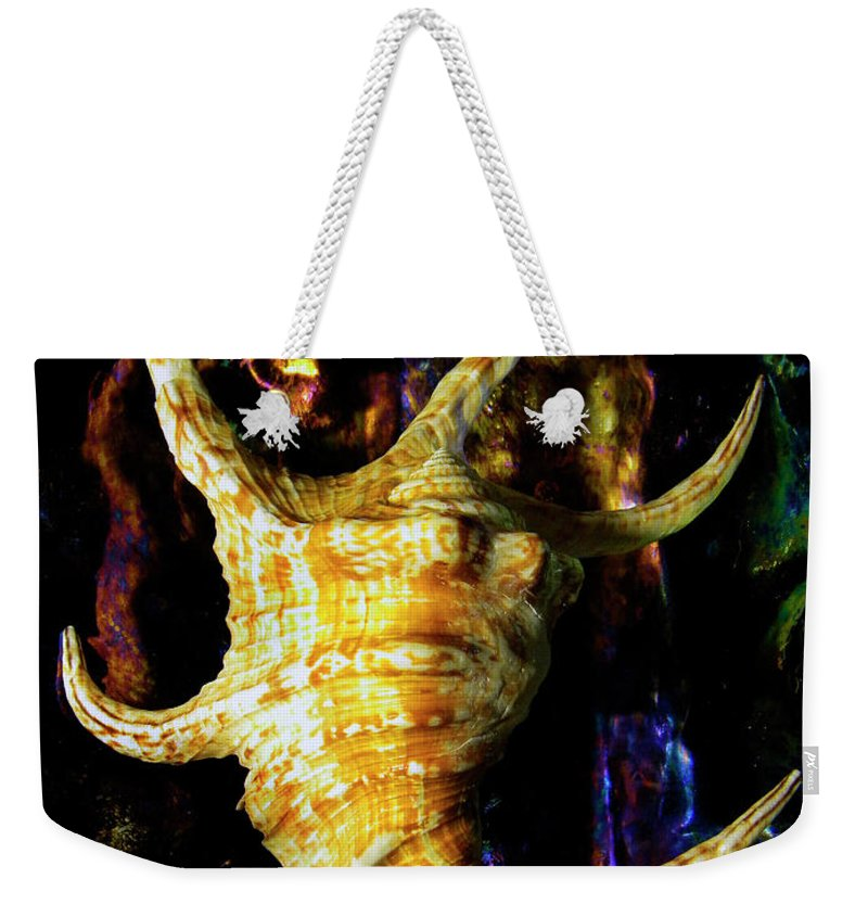 Frank Wilson Weekender Tote Bag featuring the photograph The Arthritic Spider Conch Seashell by Frank Wilson