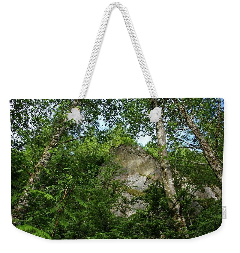 Mountains Weekender Tote Bag featuring the photograph The Base Of Beacon Rock by Jeff Swan