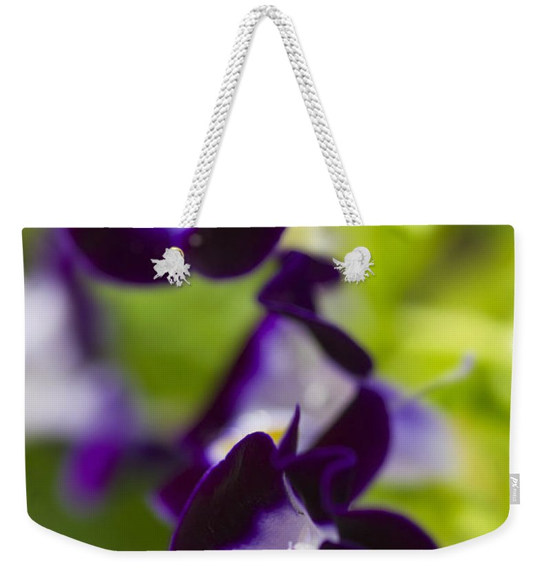 Pansy Weekender Tote Bag featuring the photograph What's Wrong With Being A Pansy? by Roberto Aloi