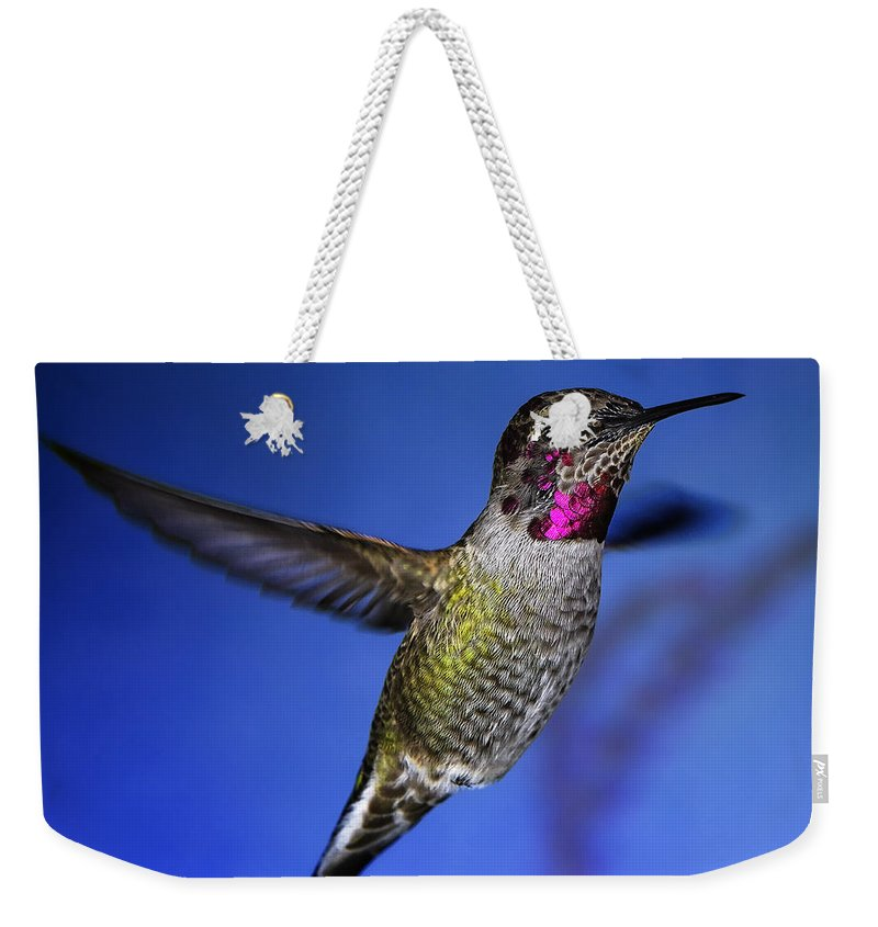 Birds Weekender Tote Bag featuring the photograph The Best Feature by William Freebilly photography