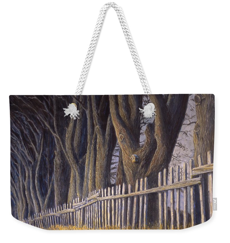 Bird House Weekender Tote Bag featuring the painting The Bird House by Jerry McElroy