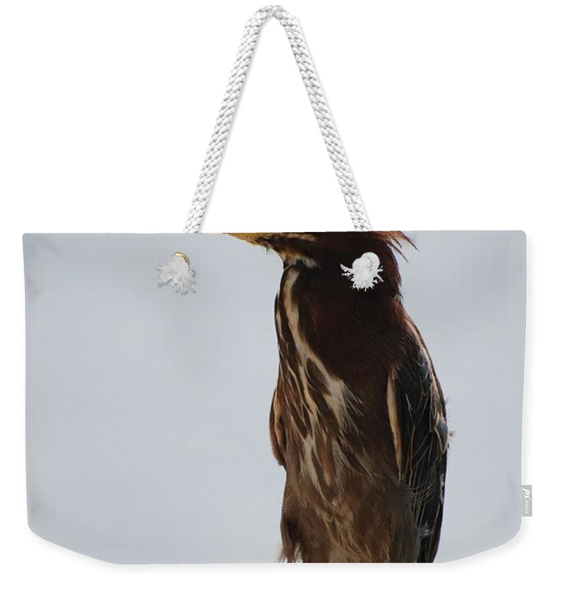 Birds Weekender Tote Bag featuring the photograph The Bird by Rob Hans