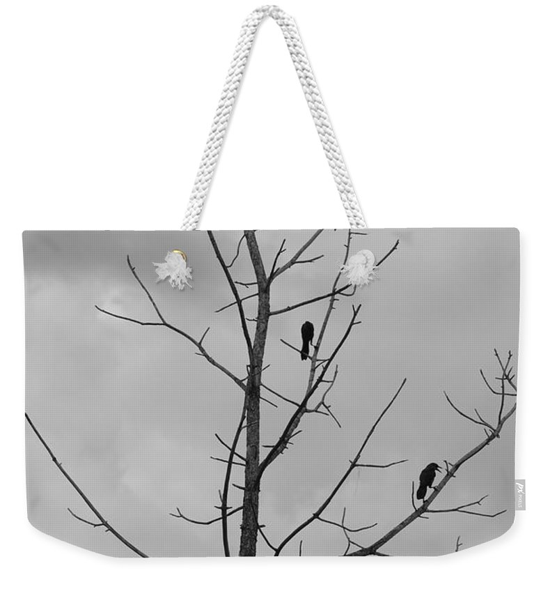 Tree Weekender Tote Bag featuring the photograph The Birds by Rob Hans