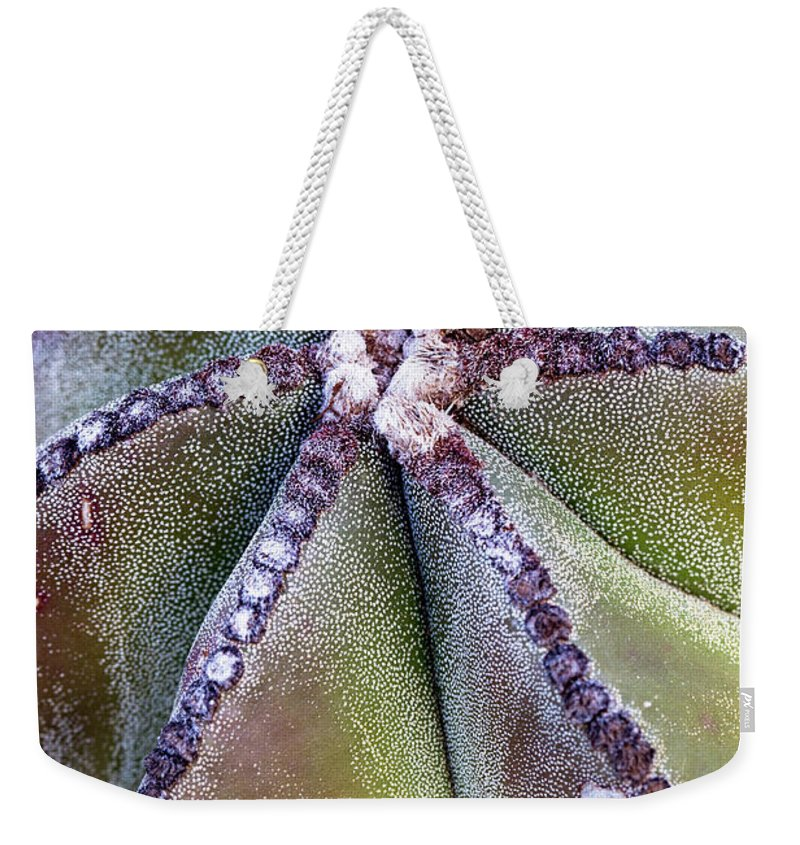Bishop's Cap Weekender Tote Bag featuring the photograph The Bishop's Cap by Nancy Forehand