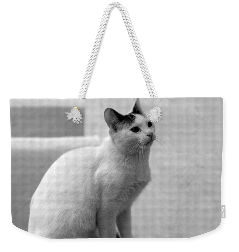 Landscape Weekender Tote Bag featuring the photograph The Blond 3 by Jouko Lehto