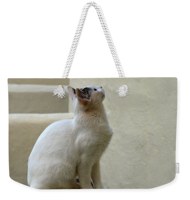 Landscape Weekender Tote Bag featuring the photograph The Blond 5 by Jouko Lehto