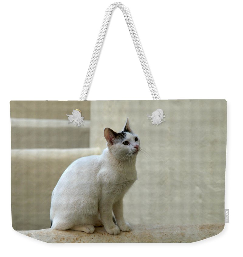 Landscape Weekender Tote Bag featuring the photograph The Blond Nr 1 by Jouko Lehto