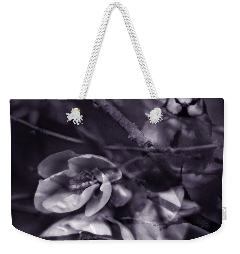 Blue Weekender Tote Bag featuring the photograph The Blue Tit by Angel Tarantella