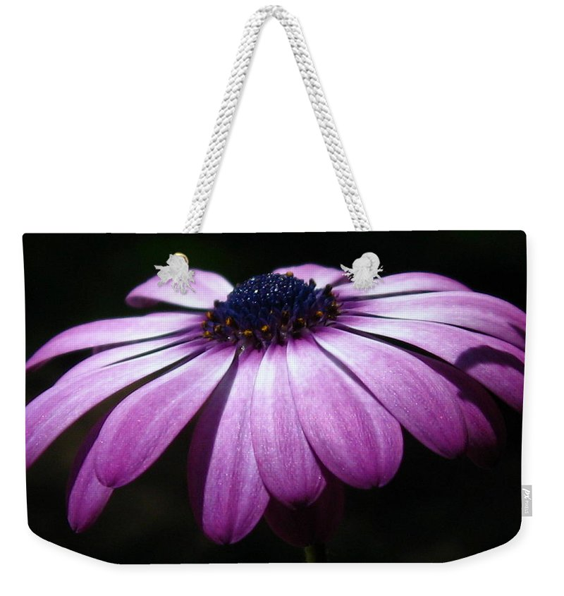 Purple Weekender Tote Bag featuring the photograph The Blues by Marla McFall
